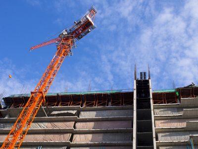 On site construction with habitat checks
