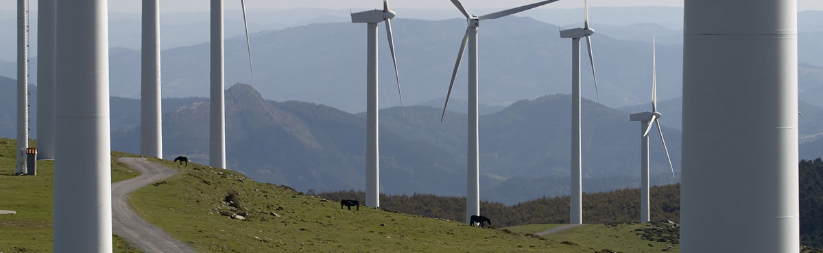 Trent wind turbines