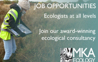 Ecologist opportunities at MKA Ecology